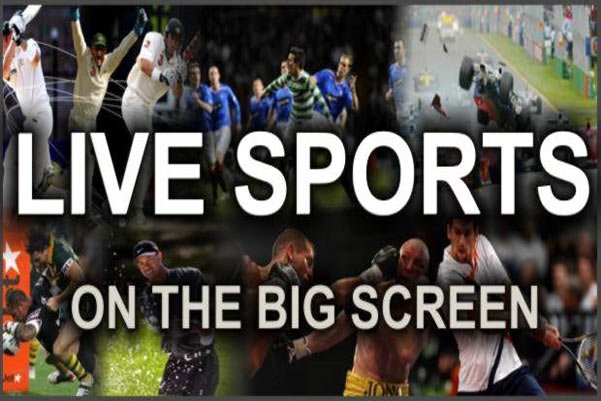 Sports 20/11+